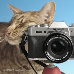 Abendkurs-Einsteiger-Fujifilm-Kopie